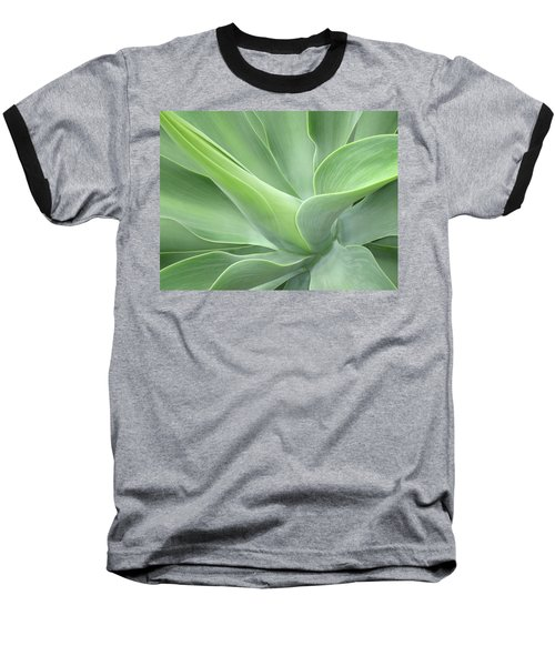 Agave Attenuata Abstract Baseball T-Shirt