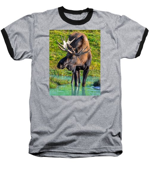 Alaska Moose 5 Baseball T-Shirt by Brian Stevens