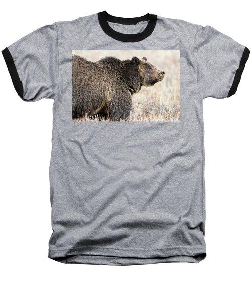 All Seems Beautiful Baseball T-Shirt by Scott Warner