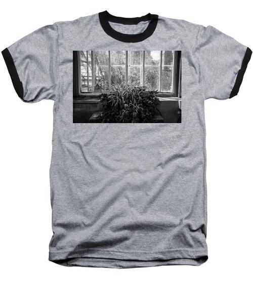 Allan Gardens Baseball T-Shirt