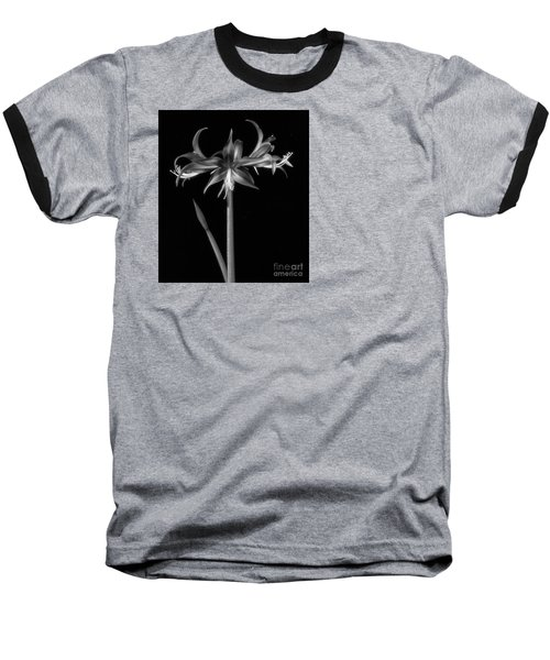 Amaryllis 'quito' Baseball T-Shirt