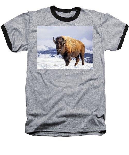 American Legend Baseball T-Shirt by Jack Bell