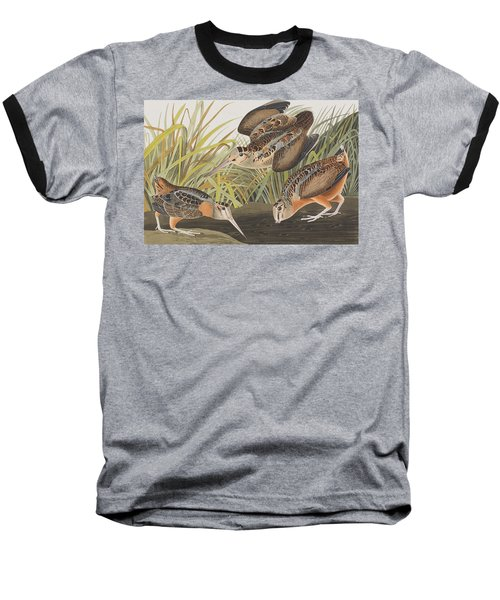 American Woodcock Baseball T-Shirt by John James Audubon