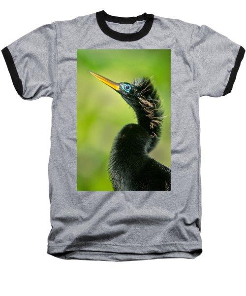 Anhinga Anhinga Anhinga, Tortuguero Baseball T-Shirt by Panoramic Images