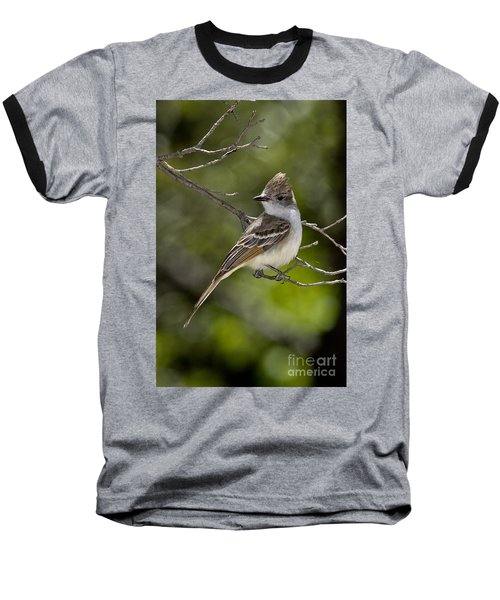 Ash-throated Flycatcher Baseball T-Shirt