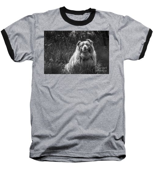 Australian Shepherd Dog Baseball T-Shirt
