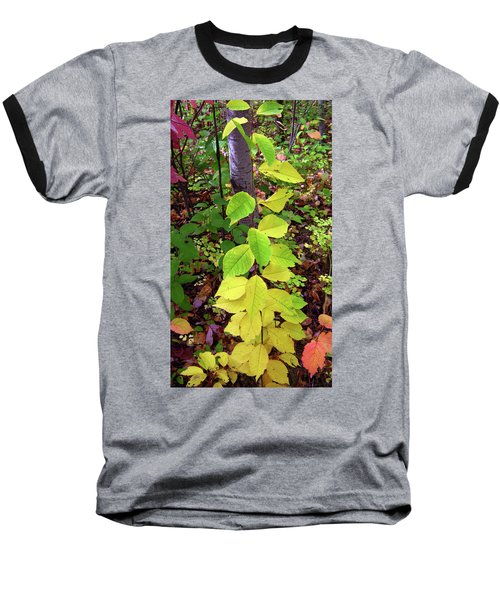 Autumn Leaves II Baseball T-Shirt