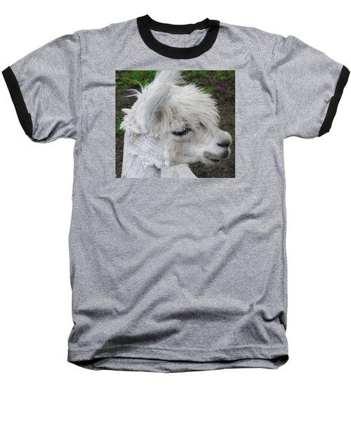 Baby Llama Baseball T-Shirt by Ellen Henneke