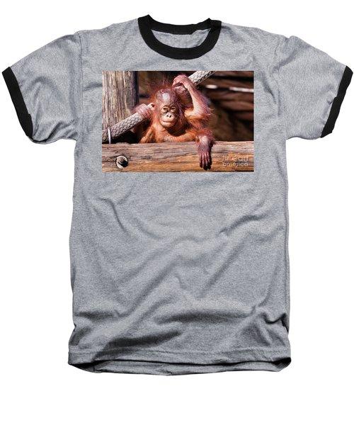 Baby Orangutan Baseball T-Shirt by Stephanie Hayes