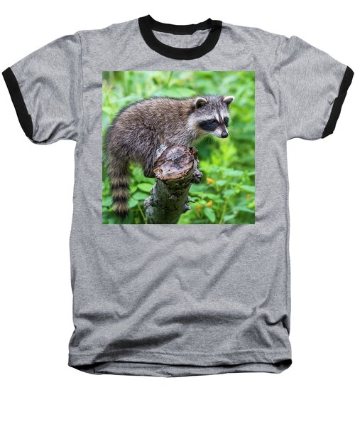 Baseball T-Shirt featuring the photograph Baby Racoon by Paul Freidlund