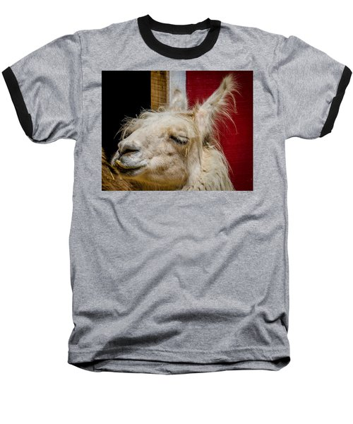 Baseball T-Shirt featuring the photograph Bad Hair Day 3 by Kathleen Scanlan