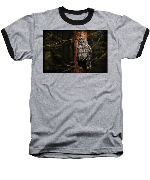 Baseball T-Shirt featuring the photograph Barred Owl In Pine Tree by Michael Cummings