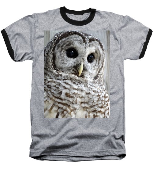 Barred Owl Baseball T-Shirt