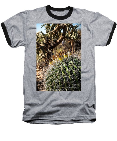 Barrel Cactus Baseball T-Shirt by Lawrence Burry