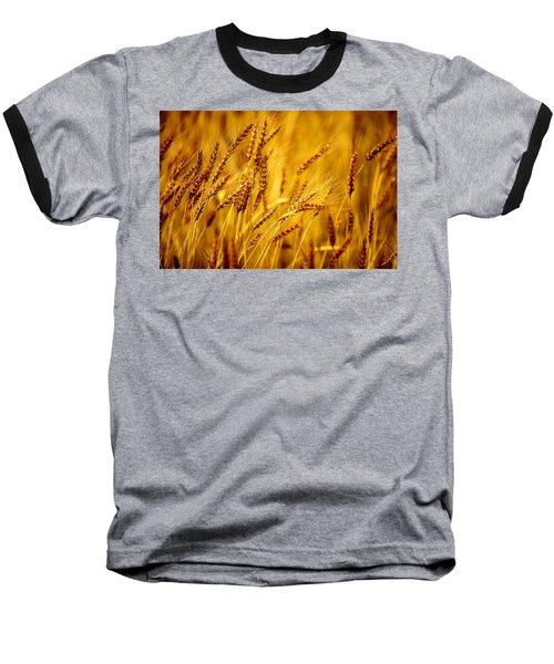 Bearded Barley Baseball T-Shirt