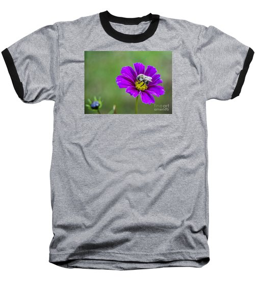 Baseball T-Shirt featuring the photograph Bee by Alana Ranney