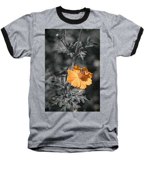 Bee On Flower Baseball T-Shirt