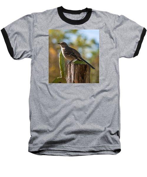 Bird On A Post Baseball T-Shirt