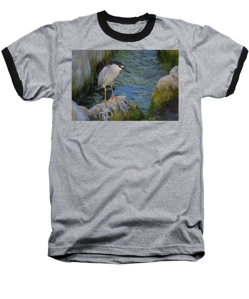 Black Crowned Night Heron Baseball T-Shirt