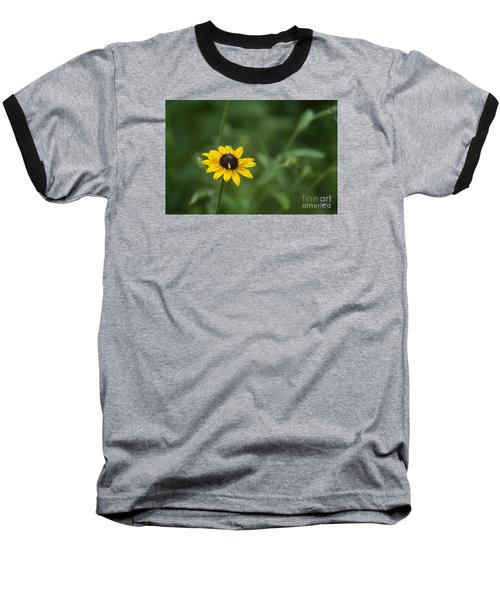 Baseball T-Shirt featuring the photograph Black Eye Susan by Alana Ranney