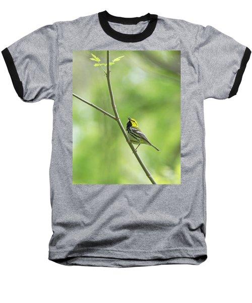 Black-throated Green Warbler Baseball T-Shirt