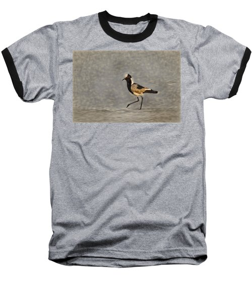 Black-winged Lapwing Art Baseball T-Shirt by Kay Brewer