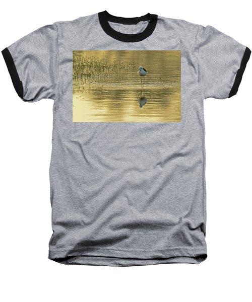 Black-winged Stilt Baseball T-Shirt