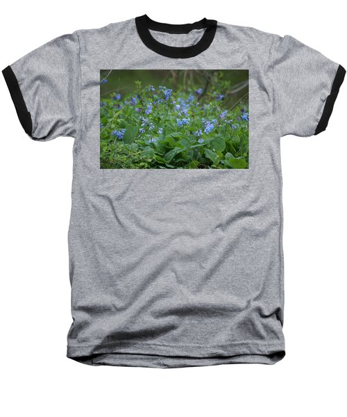 Blue Bells Baseball T-Shirt by Heidi Poulin