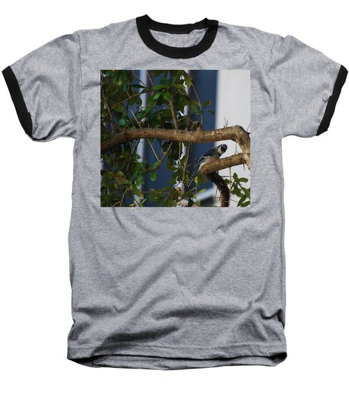 Baseball T-Shirt featuring the photograph Blue Bird by Rob Hans