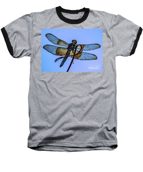 Blue Dragonfly Baseball T-Shirt by Toma Caul