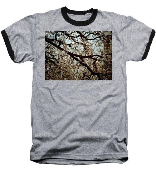 Branch One Baseball T-Shirt