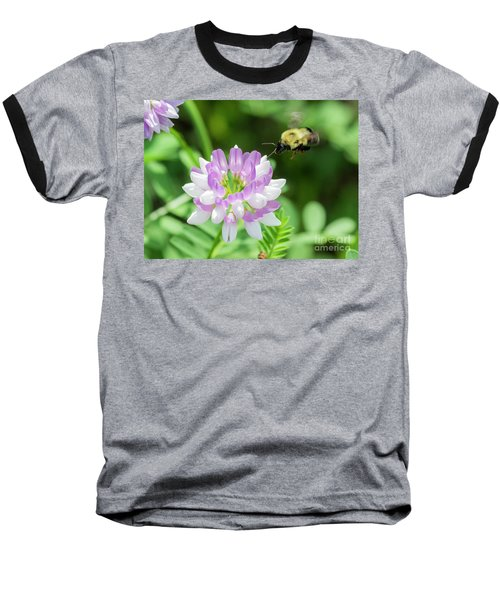 Bumble Bee Pollinating A Flower Baseball T-Shirt by Ricky L Jones