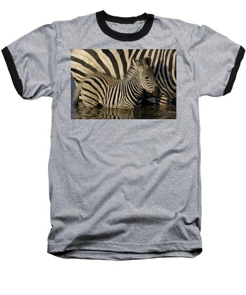 Burchells Zebra Equus Burchellii Foal Baseball T-Shirt