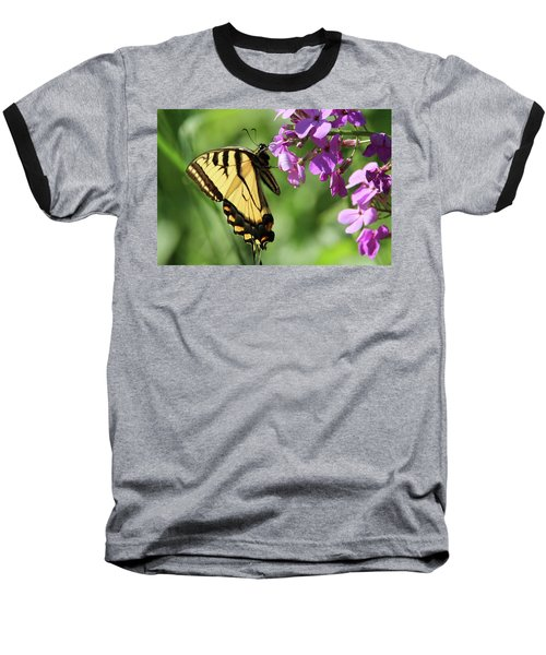 Butterfly Baseball T-Shirt by David Stasiak