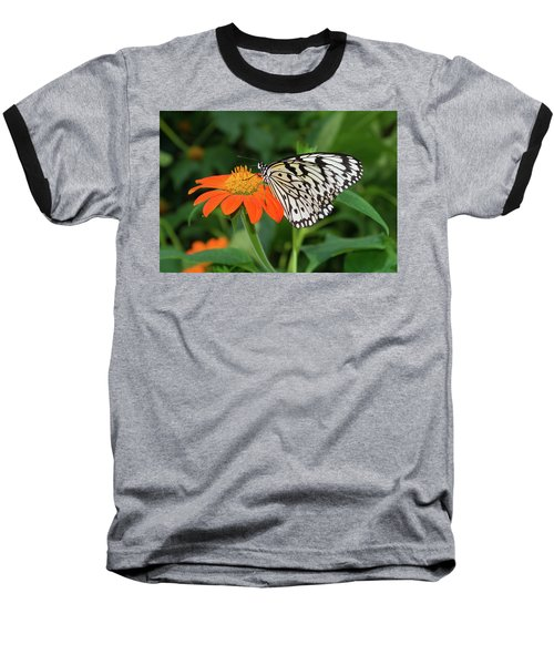 Butterfly On Flower Baseball T-Shirt by Hans Engbers