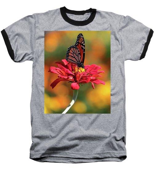 Butterfly On Zinnia Baseball T-Shirt