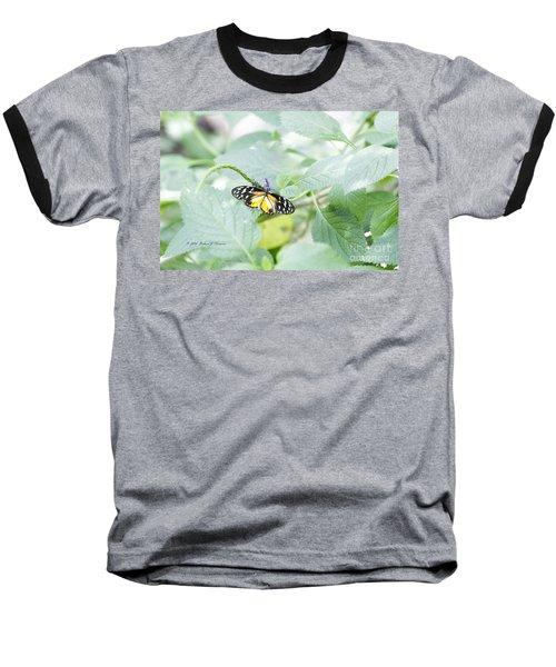 Tiger Butterfly Baseball T-Shirt
