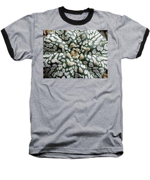 Cactus 1 Baseball T-Shirt by Selena Boron