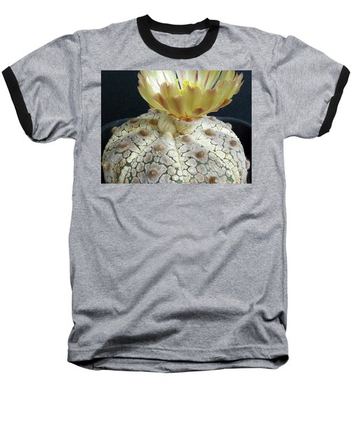Cactus Flower 1 Baseball T-Shirt by Selena Boron