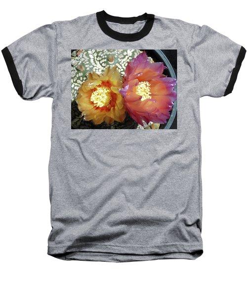 Cactus Flower 3 Baseball T-Shirt by Selena Boron