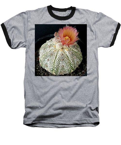 Cactus Flower 4 Baseball T-Shirt by Selena Boron