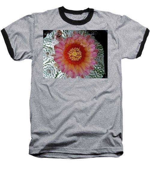 Cactus Flower 5 Baseball T-Shirt by Selena Boron