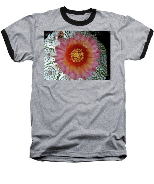 Cactus Flower 5 Baseball T-Shirt