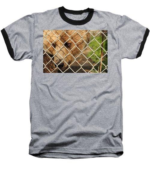 Caged Bear Baseball T-Shirt
