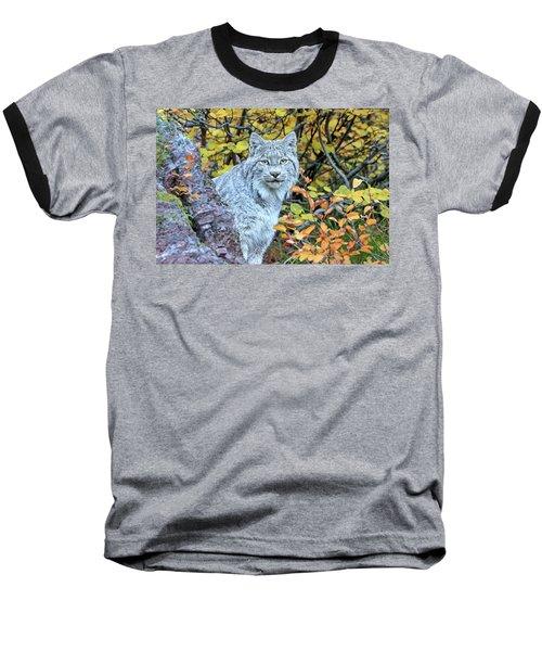 Canada Lynx Baseball T-Shirt by Jack Bell