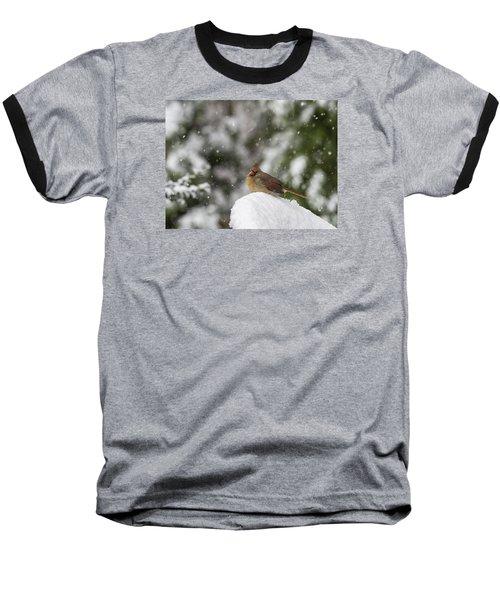 Cardinal In Snow Baseball T-Shirt
