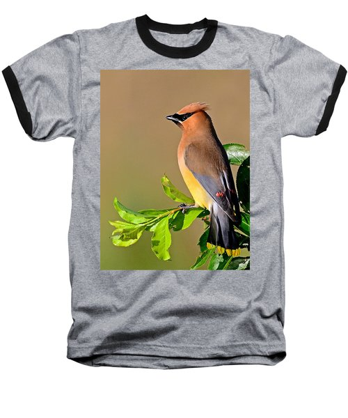 Baseball T-Shirt featuring the photograph Cedar Waxwing by Rodney Campbell