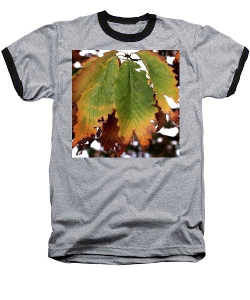 Changing Leaves Baseball T-Shirt