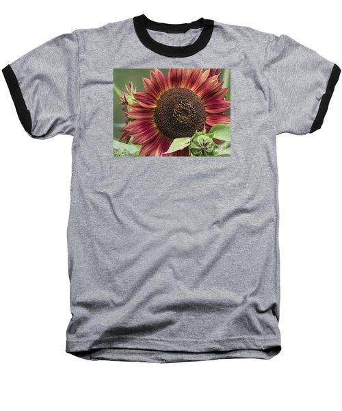 Chianti 2015 Baseball T-Shirt