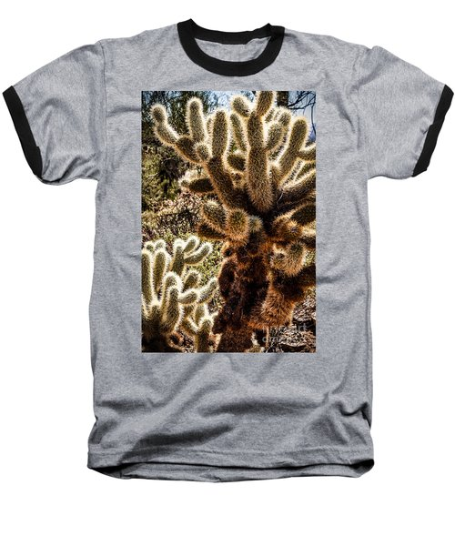 Cholla Cacti Baseball T-Shirt by Lawrence Burry